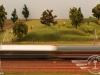 03-treno-in-corsa-nella-campagna-pavese